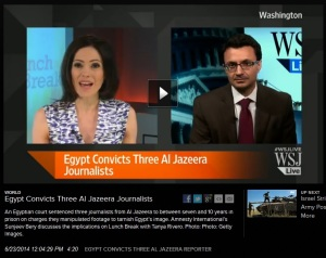 SBery - interview - 2014-06-23 - WSJ - Egypt - Al Jazeera sentences